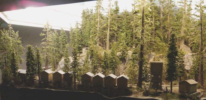 Overview Sawmill Camp #1